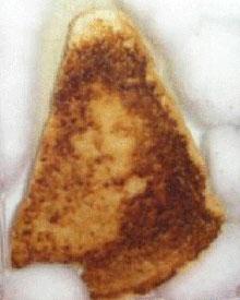 virgin-mary-cheese