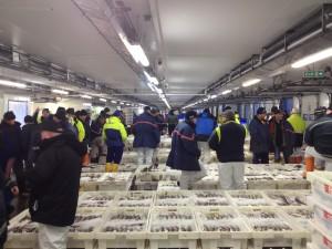 Peterhead market in full flow
