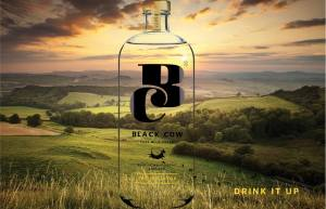 Black Cow Vodka is made in West Dorset