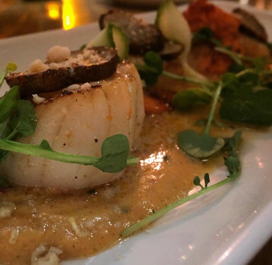 Ras Hanout Scallops - new menu at the Hyndland Fox